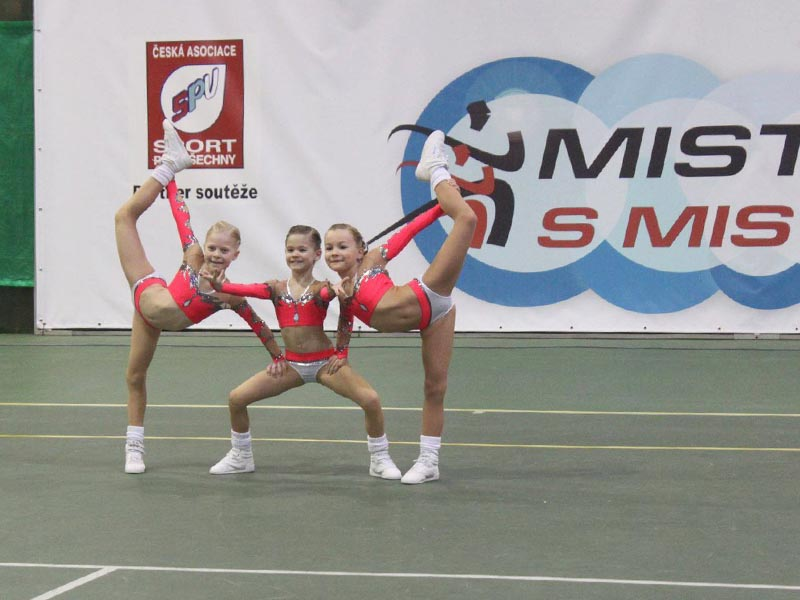 Sportovní tým
